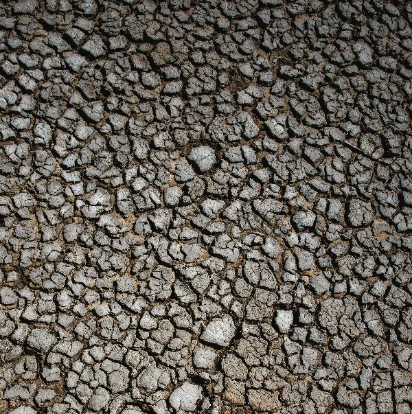 Points gachette - Stéphane MANGIN Guérisseur, magnétiseur. Meximieux, Ain Rhône, Isère